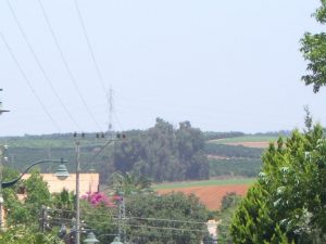 תמונות מהכפר- באדיבות הצלם, דימה טימופייב